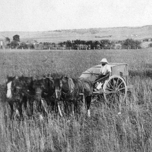 1800s farmer